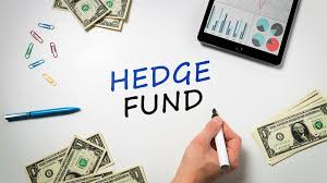 .hedge fund